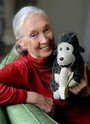 Rewind the future with Dr Jane Goodall